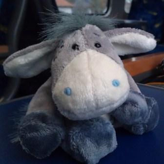 Esel im Zug