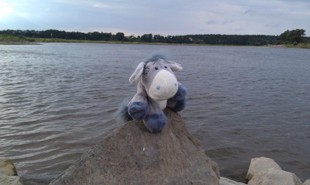 Die Elbe bei Polte - hier macht die Elbe ihren schärfsten Knick im gesamten Verlauf.