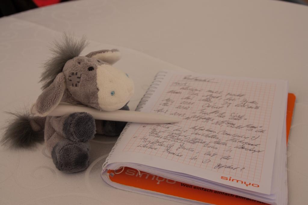 Der Esel hat seine Hausaufgaben gemacht