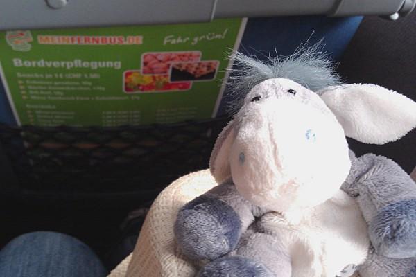 Der Esel im Fernbus