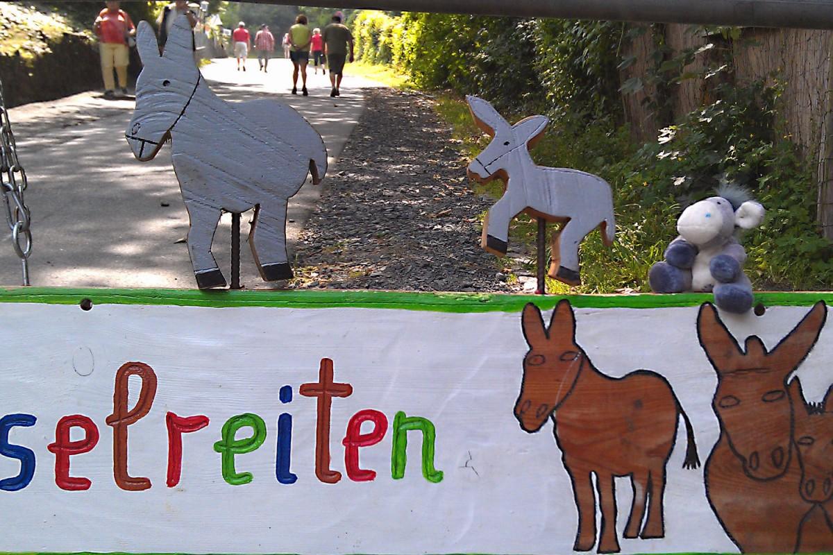 Eselreiten auf der Drachenburg