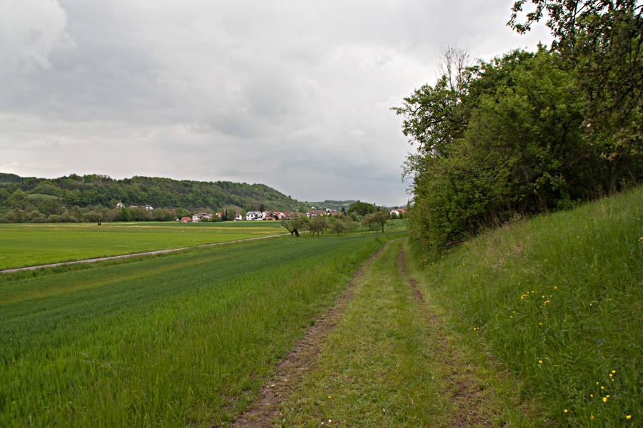 Wiesen-Feld-Weg am Kulturwanderweg Jagst