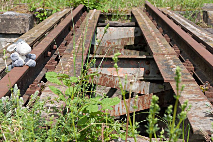 Stillgelegte Gleise der Jagsttalbahn