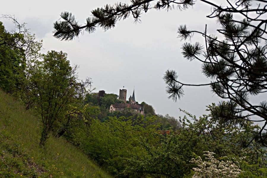 Der Blick auf die Burg Krautheim vom Kulturwanderweg Jagst