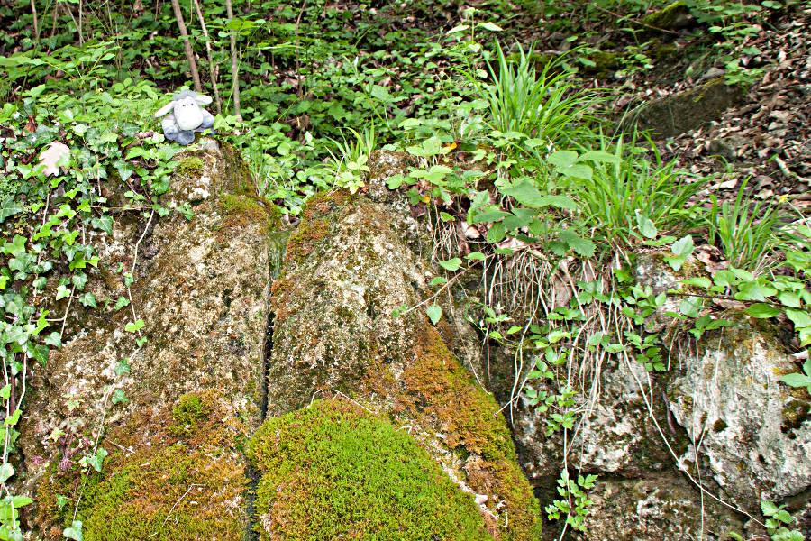 Der Kuharsch in der Nähe von Krautheim - am Kulturwanderweg Jagst
