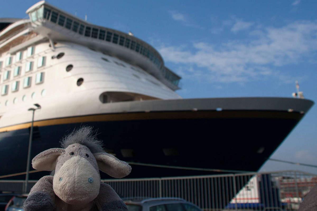 Der Esel unterwegs vor der Color Magic im Hafen von Kiel.