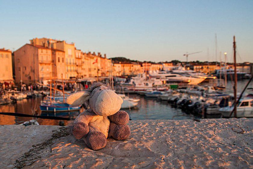 Der Esel vor der Hafenkulisse von St. Tropez