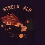 Auf der Strela Alp