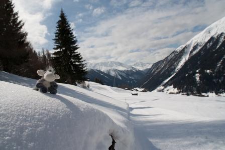 Der Esel am Winterwanderweg