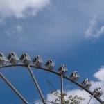 Riesenrad in der Hafencity Hamburg