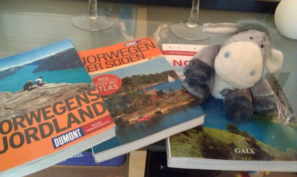Reiseführer für Norwegen