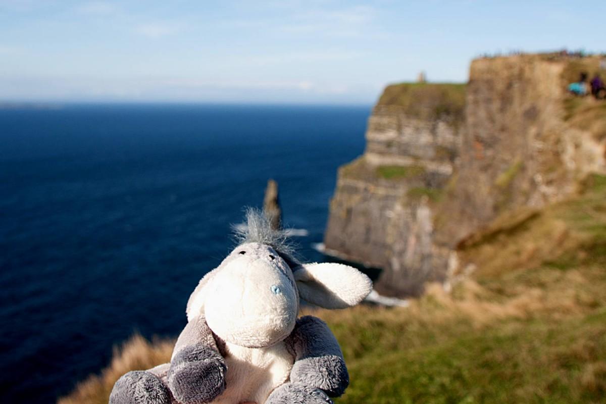 Irland Blogstöckchen - Der Esel an den Cliffs of Moher