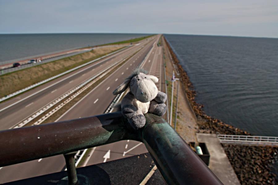 Vom Aussichtsturm aus hat man eine schöne Aussicht auf Nordsee (zur linken), Abschlussdeich und Ijsselmeer.
