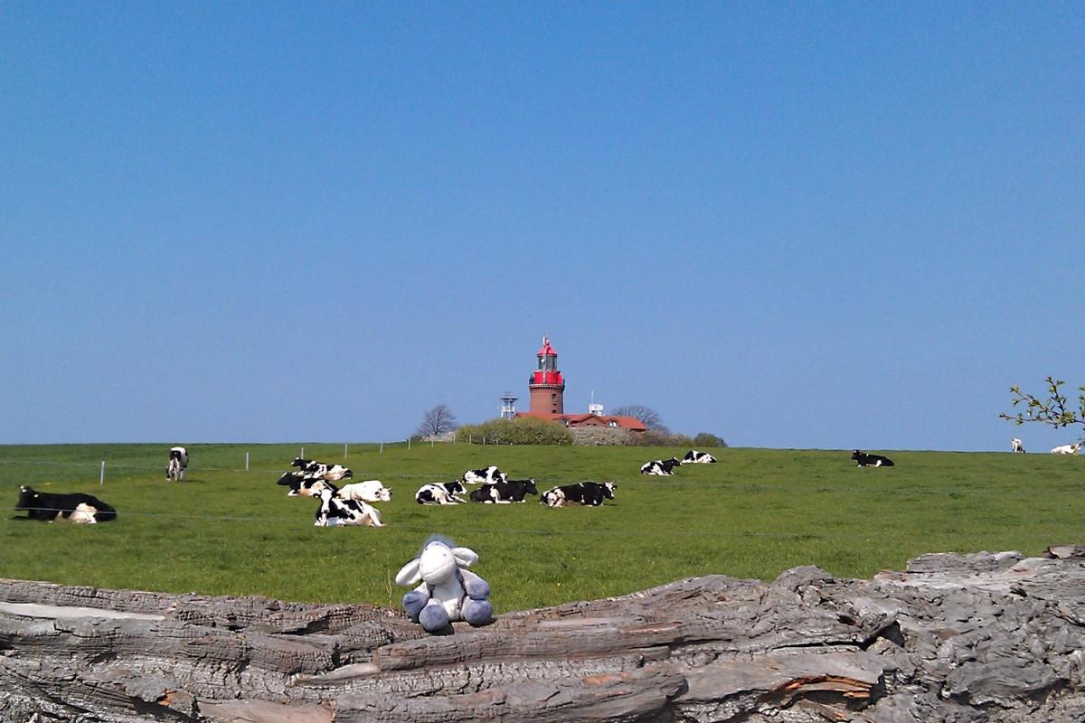 Der Leuchtturm von Bastorf in Mecklenburg-Vorpommern
