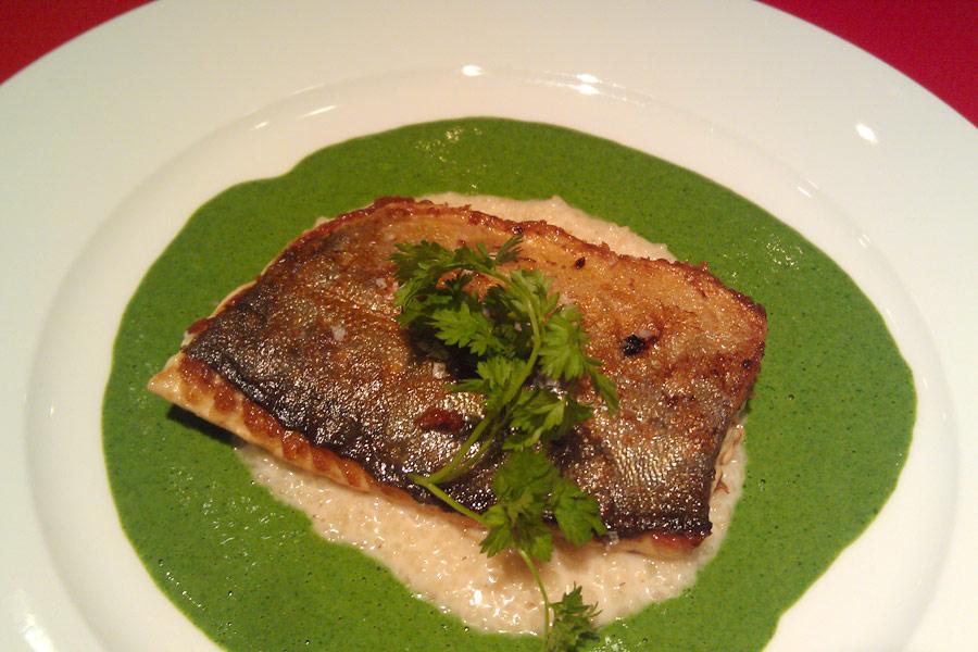 Geräucherter Saibling auf Basilikumsoße - das Ergebnis eines Fisch-Kochkurses in Bremen