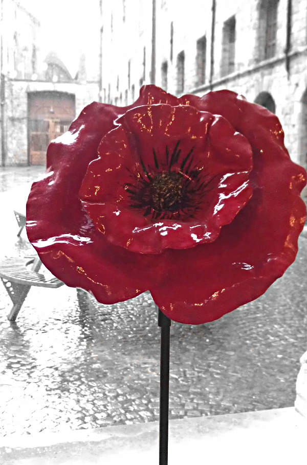 "Mohnblume im Besucherzentrum ""In Flanders Fields"" in Ypern"