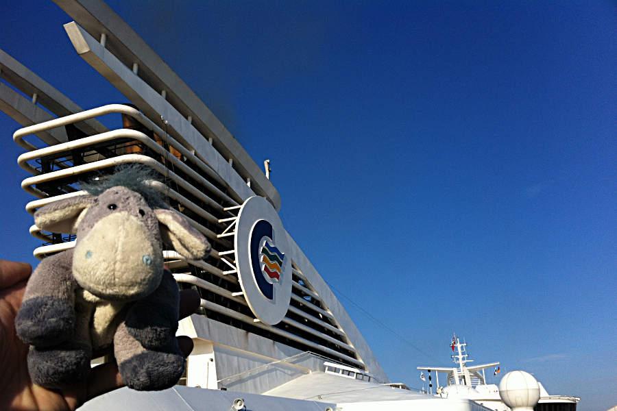 Der Esel genießt die Sonne an Deck der Color Magic auf dem Weg nach Oslo