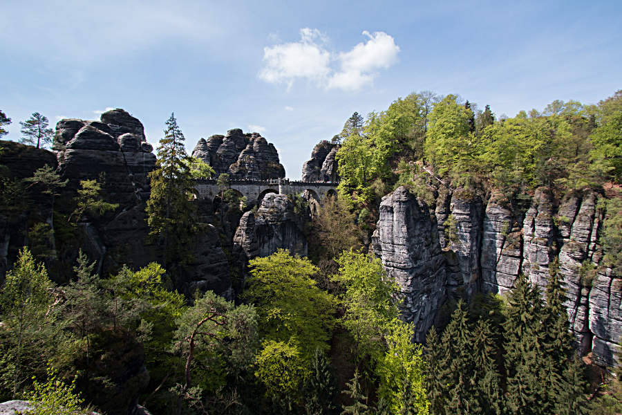 Aussicht auf die Basteibrücke im Elbsandsteingebirge