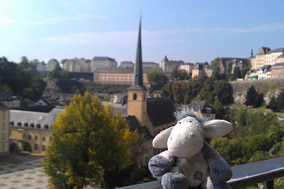Der Esel vor der Kulisse von Luxemburg-Stadt
