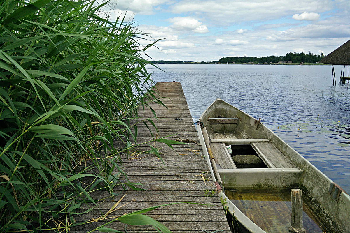 Sinkendes Boot am Krakower See, Mecklenburg