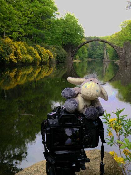 Der Esel unterwegs beim Fotografieren der Rakotzbrücke in Kromlau (c) Carolin Hinz www.esel-unterwegs.de